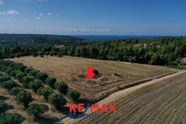 (For Sale) Land Agricultural Land  || Chalkidiki/Kassandra - 4.345 Sq.m, 27.000€
